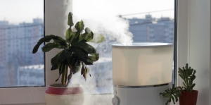 Home Health Check: Ways to Breathe Easier While Cooped Up