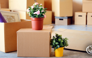 Renters Insurance Issues to Consider Before Moving