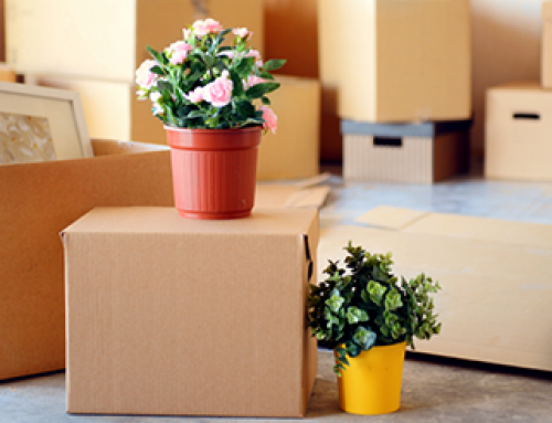 Moving? Renters Insurance is Only One of the Things You Need to Think About?